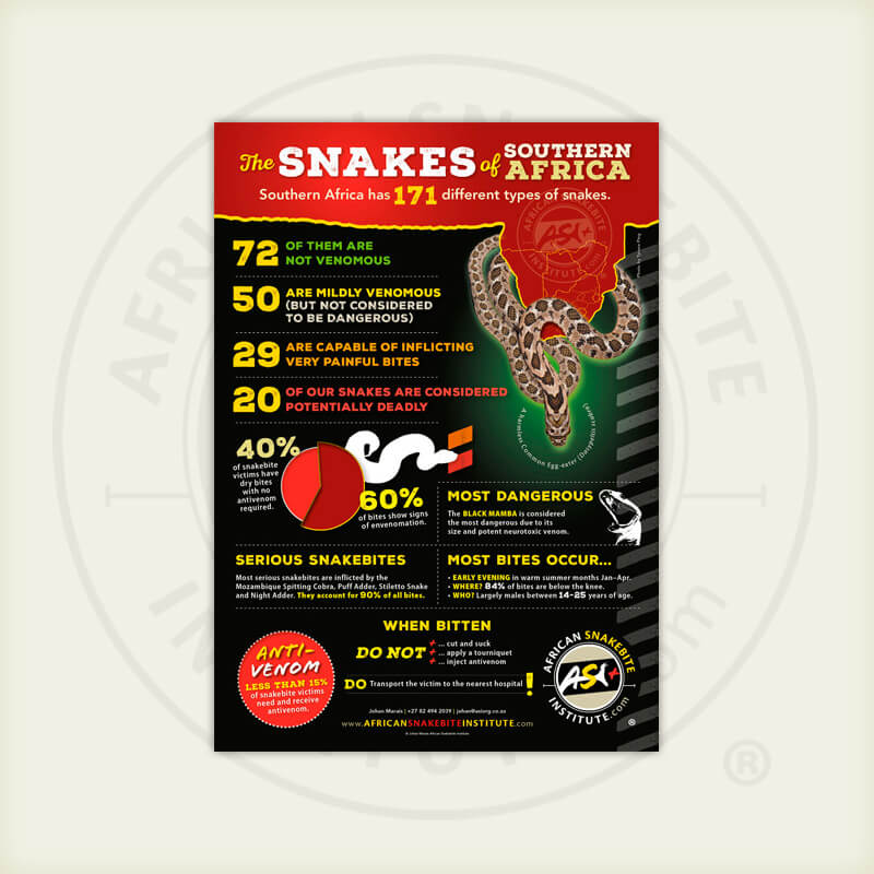 ASI The Snakes of Southern Africa Infographic Poster