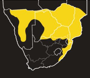 ASI Black Mamba Distribution Map