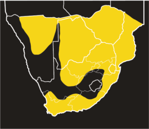 ASI Boomslang Distribution Map