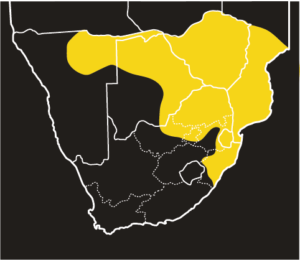ASI Mozambique Spitting Cobra Distribution Map