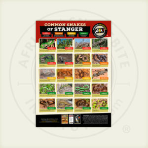 ASI Common Snakes of Stanger Poster