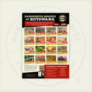 ASI Dangerous Snakes of Botswana Poster