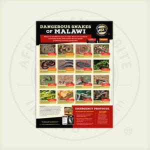 ASI Dangerous Snakes of Malawi Poster