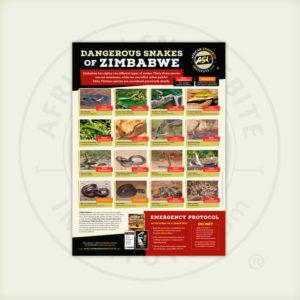 ASI Dangerous Snakes of Zimbabwe Poster
