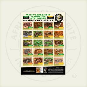 ASI Weitverbreitete Harmlose Schlangen des Südlichen Afrika Poster