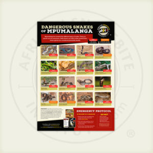 ASI Dangerous Snakes of Mpumalanga Poster
