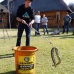 ASI Newsletter – Snake Handling