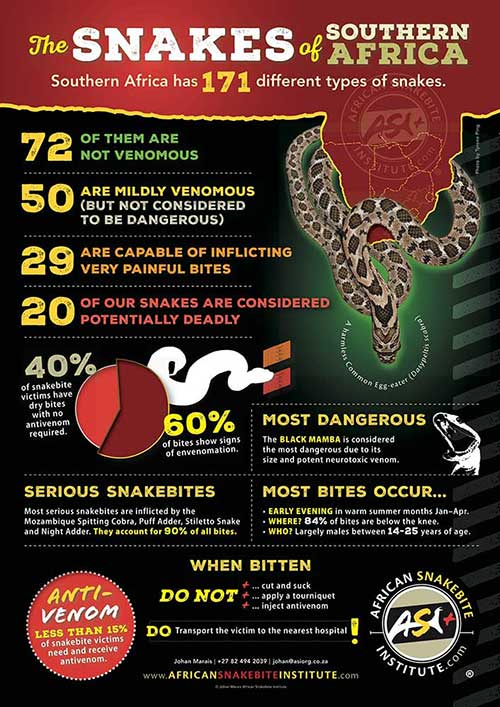 Snakebite Information Posters