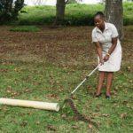 ASI Newsletter – Handling Snakes