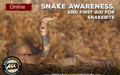 Online Course – Snake Awareness and First Aid for Snakebite